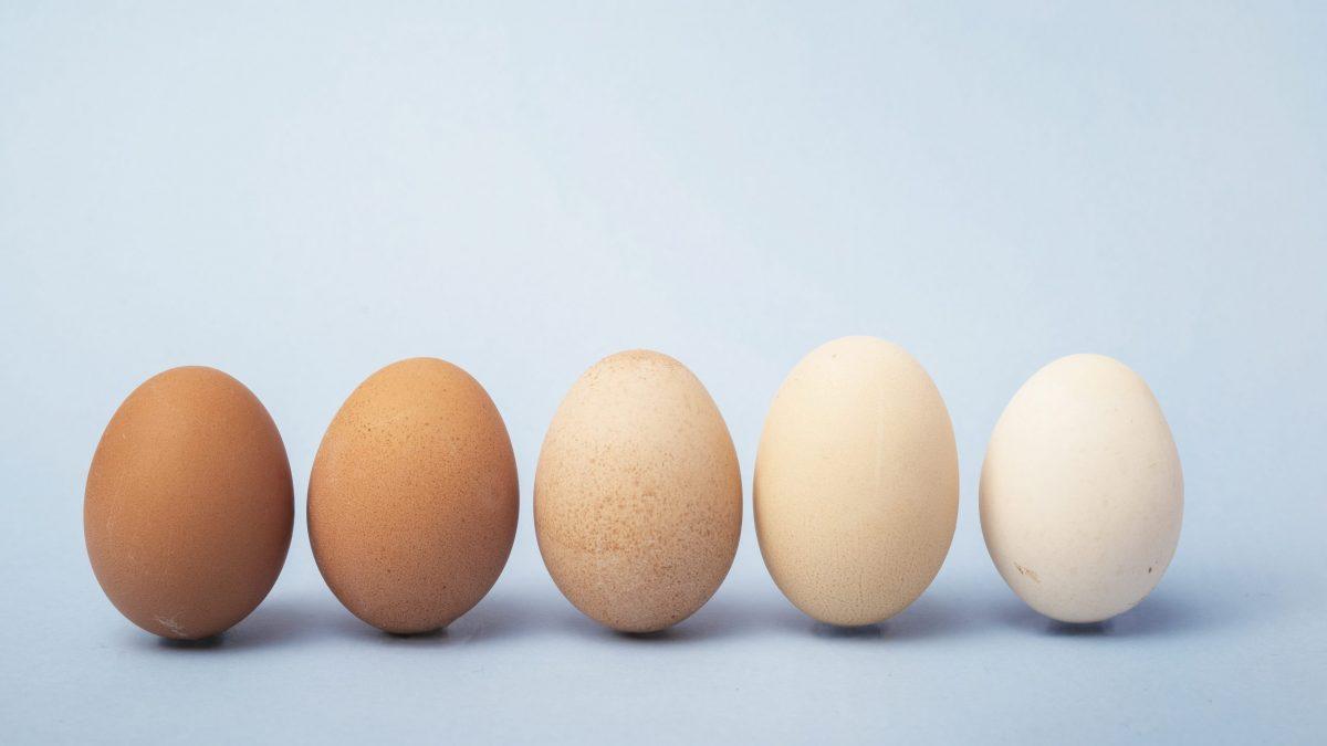 Sundere 0-16-årige illustreret ved fem æg
